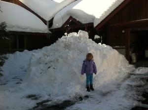 christmas-2012-snow2